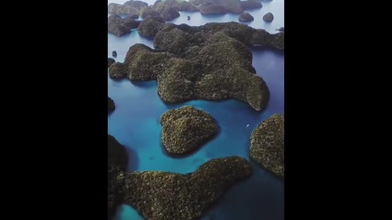Каждый посетитель, который въезжает на Палау, подписывает обязательство «Сохранять и защищать природу островов» 🌏🌊🌴🙏