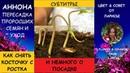 КАК ВЫРАСТИТЬ АННОНУ ДОМА ЧАСТЬ 2 ПИКИРОВКА | Гуанабана как вырастить из косточки