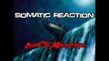 Somatic Reaction - Down To Maelstrom #alternative_rock #sountrack #crossover #downtempo