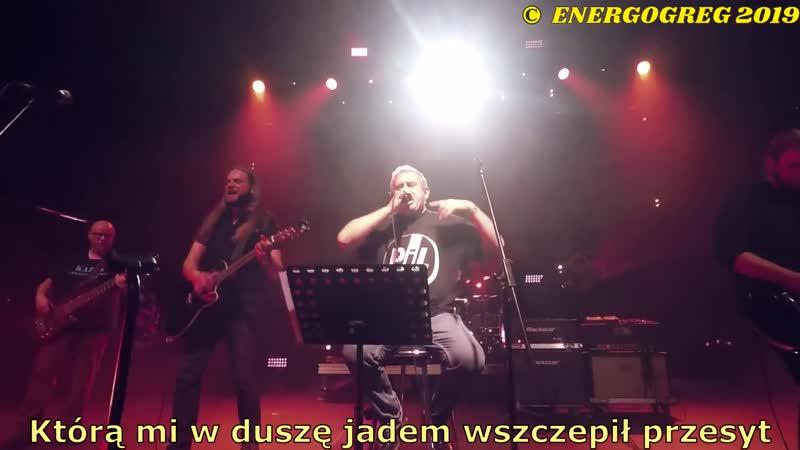 Kazik Kwartet ProForma Gdybym miał kogoś subtitles