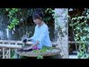 How to make a Chinese herbal tea? 逍遥草本茶,泡一杯自在逍遥!|Liziqi channel