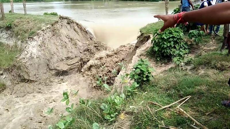 Viral    Floodwater    Big Natural Disaster at Malda West Bengal 17/08/2017 HD
