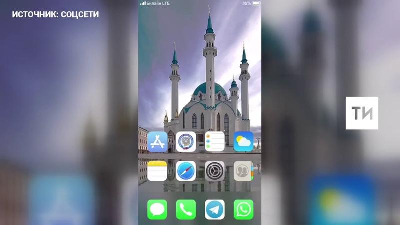 В Telegram набирает популярность видео о том, как Минниханов агитирует Шаймиева стать самозанятым
