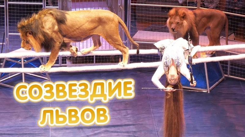 Цирк «Созвездие львов» - ПОЛНАЯ ВЕРСИЯ