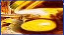 Курочка Ряба/Русская народная/Сказка/слушать/смотреть мультфильм/диафильм