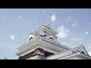 [4K Ultra HD] 桜吹雪 Sakura Fubuki-Cherry Blossoms Blizzard ( Shot on RED )