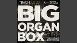 Johann Sebastian Bach Concerto for solo organ No. 5 in D minor (after Vivaldi Op. 311, RV...