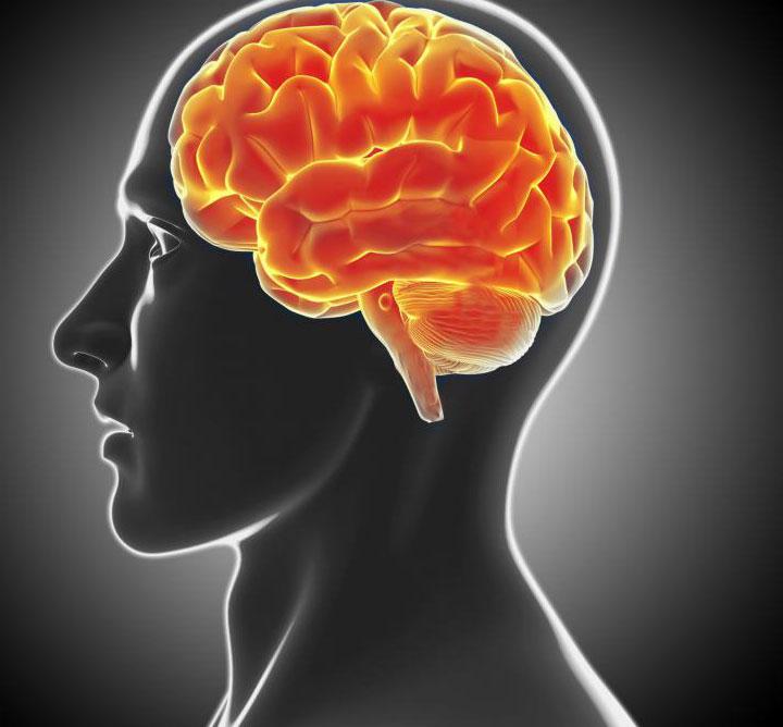 Упражнения могут помочь улучшить физическую форму мозга.