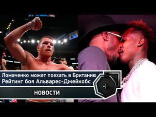 Когда вернется Усик, рейтинг Альварес-Джейкобс, бой Ломаченко в Британии   FightSpace