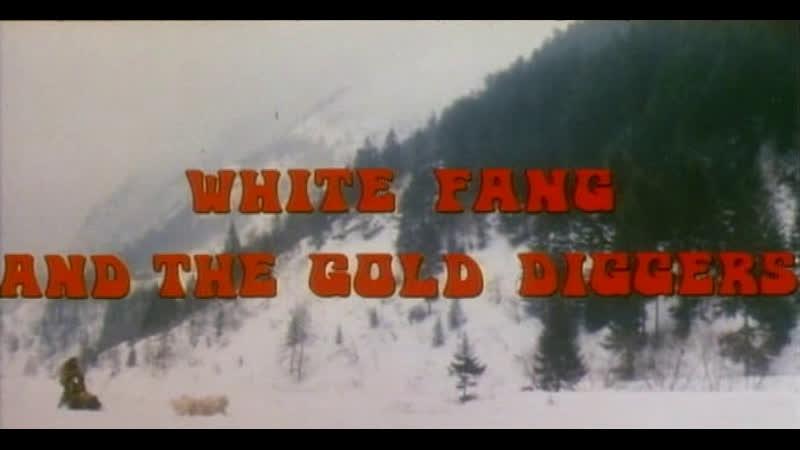 Белый клык и золотоискатели La spacconata 1975