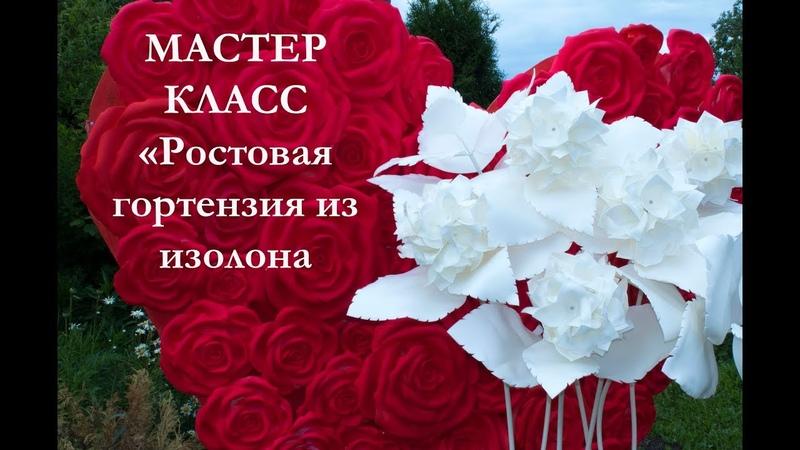Ростовая ГОРТЕНЗИЯ из ИЗОЛОНА (Мастер класс 2018)