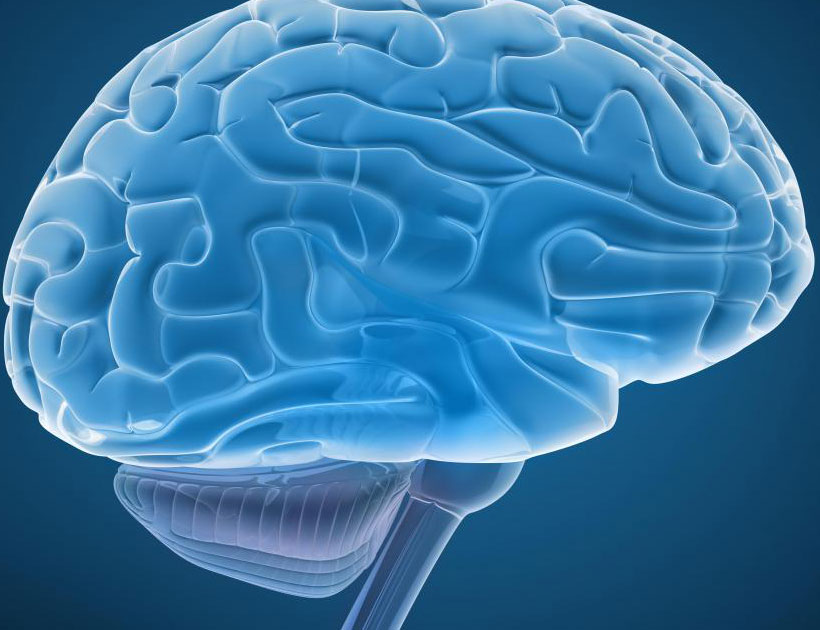Истинная ИА потребует реконструкции человеческого мозга или сопряжения его с компьютерами.