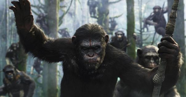 Новая часть «Планеты обезьян» официально в разработке