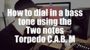 How to dial in a bass tone using the Two notes Torpedo C.A.B. M