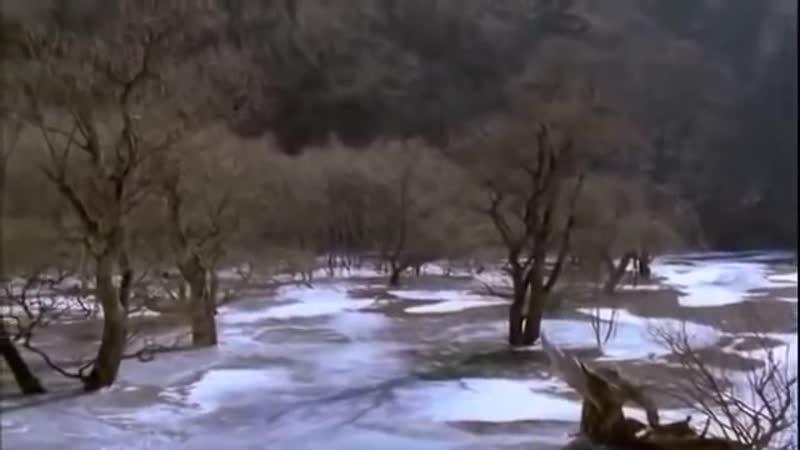 «Весна, лето, осень, зима… и снова весна» — фильм южнокорейского ре