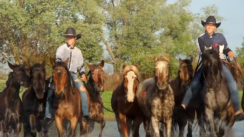 Kupanie_krasnogo_konya_Photography_workshop__Bathing_the_Red_Horse__(MosCatalogue.net)
