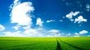 ┇ᴴᴰ Потрясающий нашид - Мухаммад аль Мукит ┇ᴴᴰ