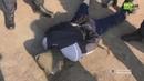 Сотрудник СБУ помогал в конспирации банды : как задерживали грабителей инкассаторов