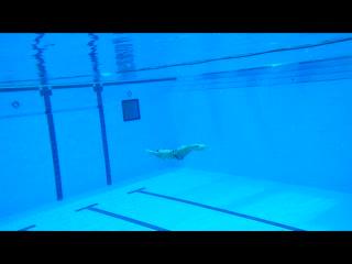 Swimming 50m underwater
