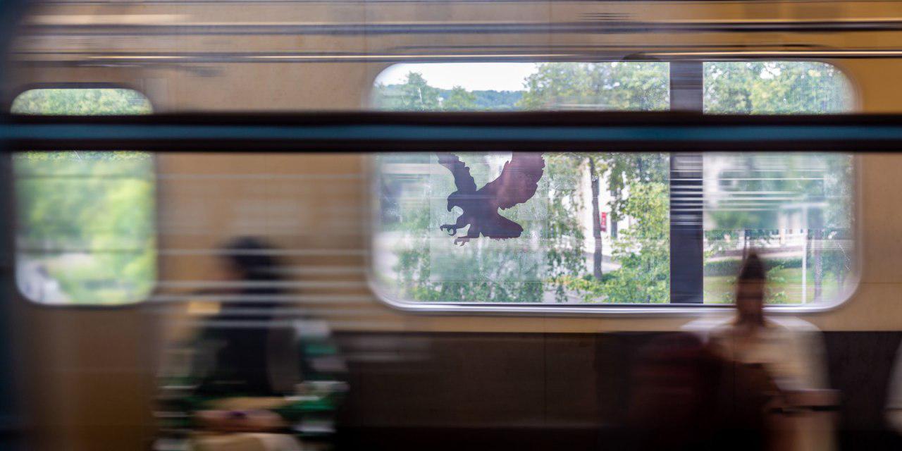Стикеры с силуэтами орлов появились на стеклах вестибюлей станций метро «Жулебино» и «Лермонтовский проспект»