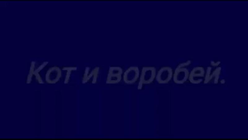 90319 Кот и воробей 60с .mp4