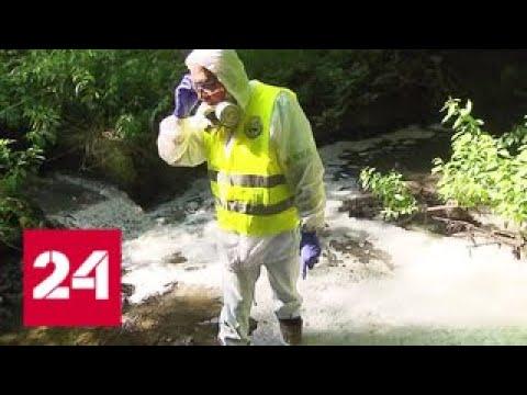 Река превратилась в сточную канаву в Подольске назревает экологическая катастрофа - Россия 24