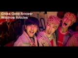 Cross Gene Answer wikihow articles