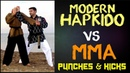 Modern Hapkido Vs MMA typical punches and kicks. Hapkido Fight Techniques