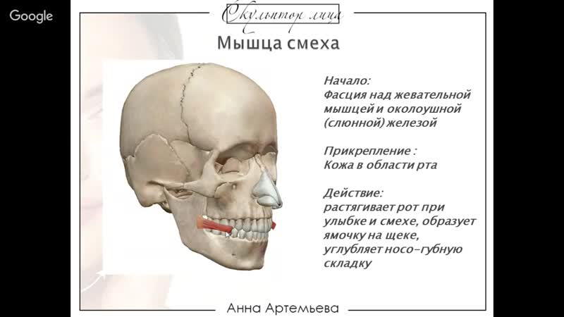 Марафон Скульптор Лица День 3 Часть1