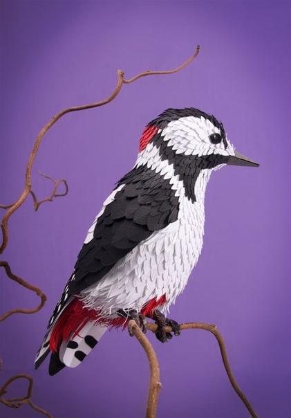 С помощью более чем 4 тысяч кусочков бумаги художница кропотливо создаёт трёхмерные скульптуры птиц и бабочек