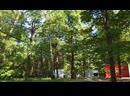 Химки 189 парк культуры и отдыха пкио имени Льва Николаевича Толстого фестивальная пл. летом днем