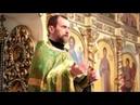 Протоиерей Виктор Иванов Вербное воскресенье или Вход Господень в Иерусалим 21 04 2019 г