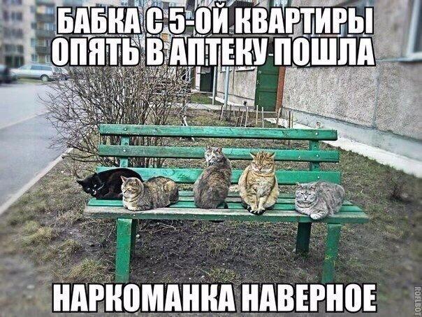 ВЕСЕЛАЯ ЭЗОТЕРИКА - Страница 3 PO70Q0L7uG0