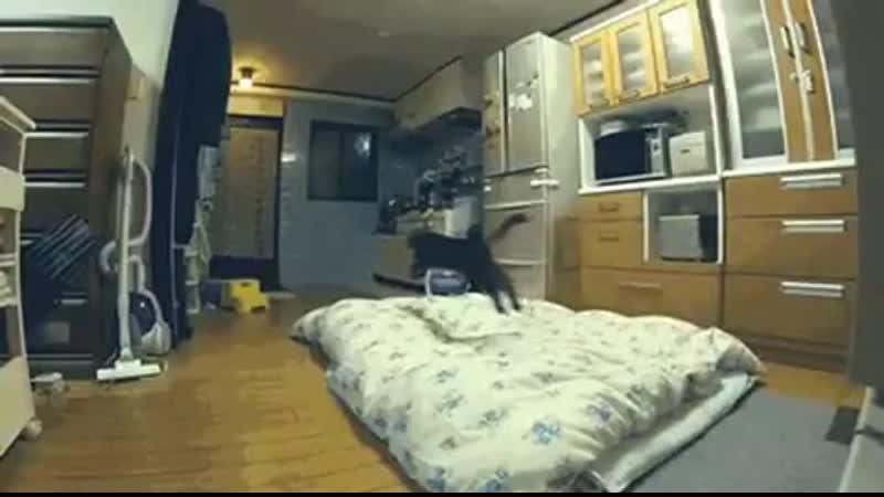 Когда тебе запрещают сидеть на кроватке и ты учишься просто парить над ней😆
