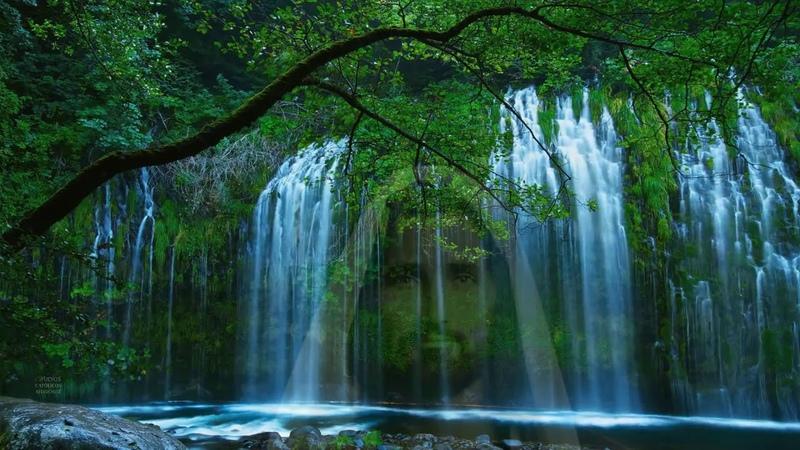 2 Horas de Paz con Jesus Melodia con Sonidos Naturales Dormir Orar Descansar