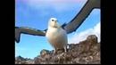 Léo Ferré chante Baudelaire - L'Albatros (Greek subtitles)