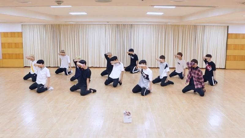 SEVENTEEN - 울고 싶지 않아 (Don't Wanna Cry) Dance Practice (Mirrored)