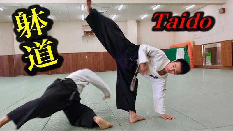 これが躰道か!【1】秘密を探りに拓大へ What is Taido This is Taido