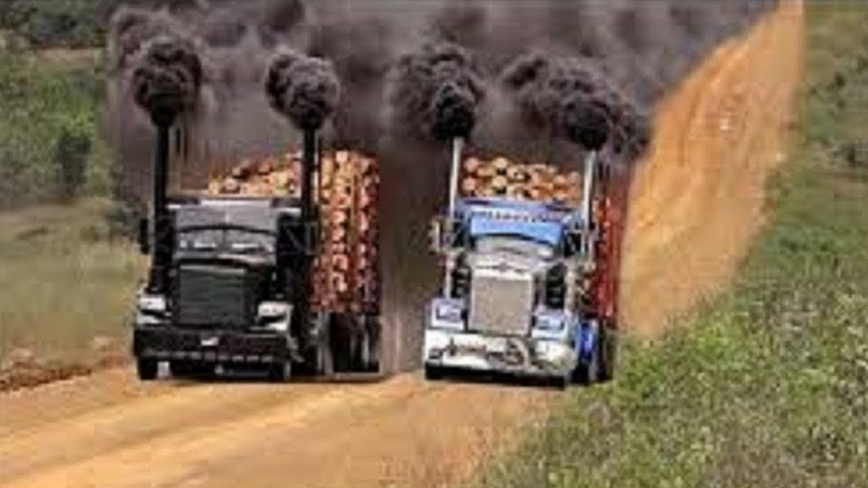 10 World Dangerous Idiots Biggest Logging Wood Truck Heavy Equipment Operator Machines Skill Working