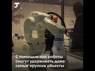 Промышленные роботы получили присоски, как у ящериц