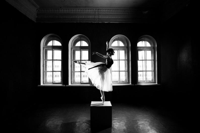 Фотограф Марина Романова, зал «Грэй»