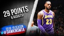 LeBron James Full Highlights 2019.03.14 Lakers vs Raptors - 29 Pts, 6 Asts! | FreeDawkins