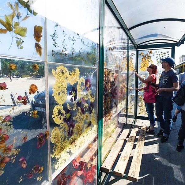 Жители города Лодзь (Польша , которые пользуются общественным транспортом, теперь могут ежедневно наслаждаться творением художницы Доминики Цебулы. Она превратила трамвайную остановку на площади