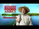 Необычная еда. Америка 5-07 Ярмарка в Миннесоте - творог, кукуруза и шкварки | Minnesota