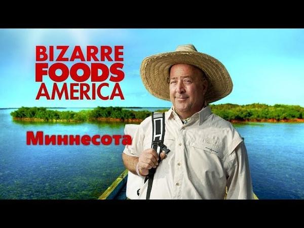 Необычная еда Америка 5 07 Ярмарка в Миннесоте творог кукуруза и шкварки Minnesota