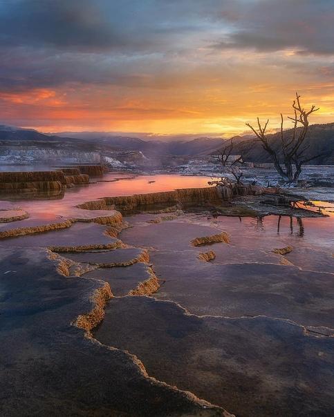 Террасы Мамонтовых горячих источников на рассвете (Йеллоустонский национальный парк)