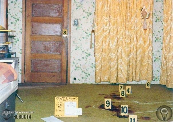Тайна нераскрытого массового убийства в лесном доме Эта история началась осенью 1980 года, когда Гленна Сьюзен Сью Шарп разошлась со своим мужем и решила уехать из Коннектикута в Северную