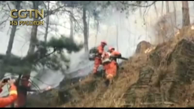 Пожар произошел в горном лесном массиве в пригороде Пекина 30-го марта