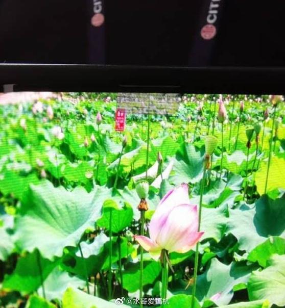 OPPO показала смартфон с фронтальной камерой под