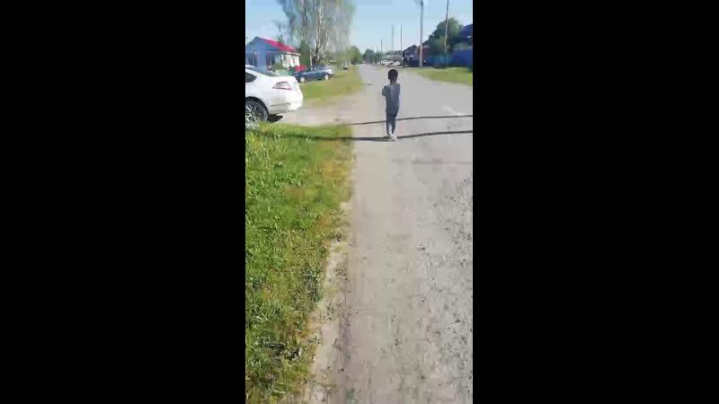 Прогулка по Зверику🏡